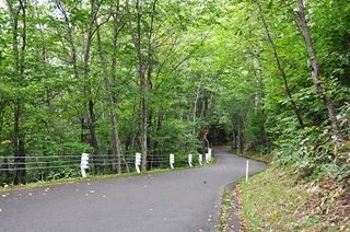 山形村への道_1 2015.9.2_k.jpg